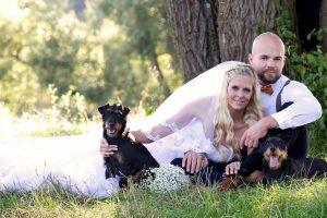 Hochzeitspaar sitzt im Gras mit 2 Dackeln um sich herum
